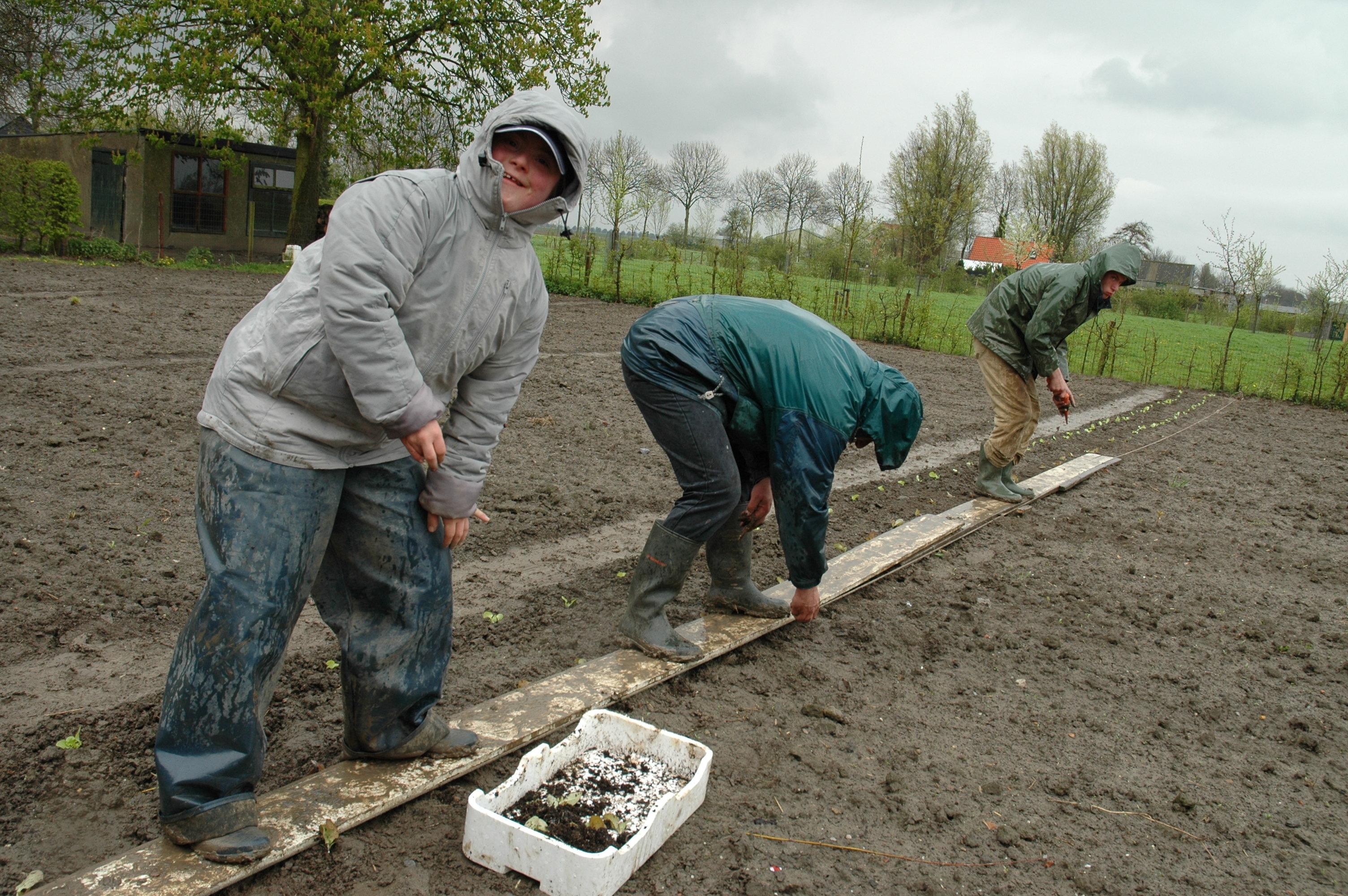 Zorgboerderij Zwanenhoeve, Zevenbergen